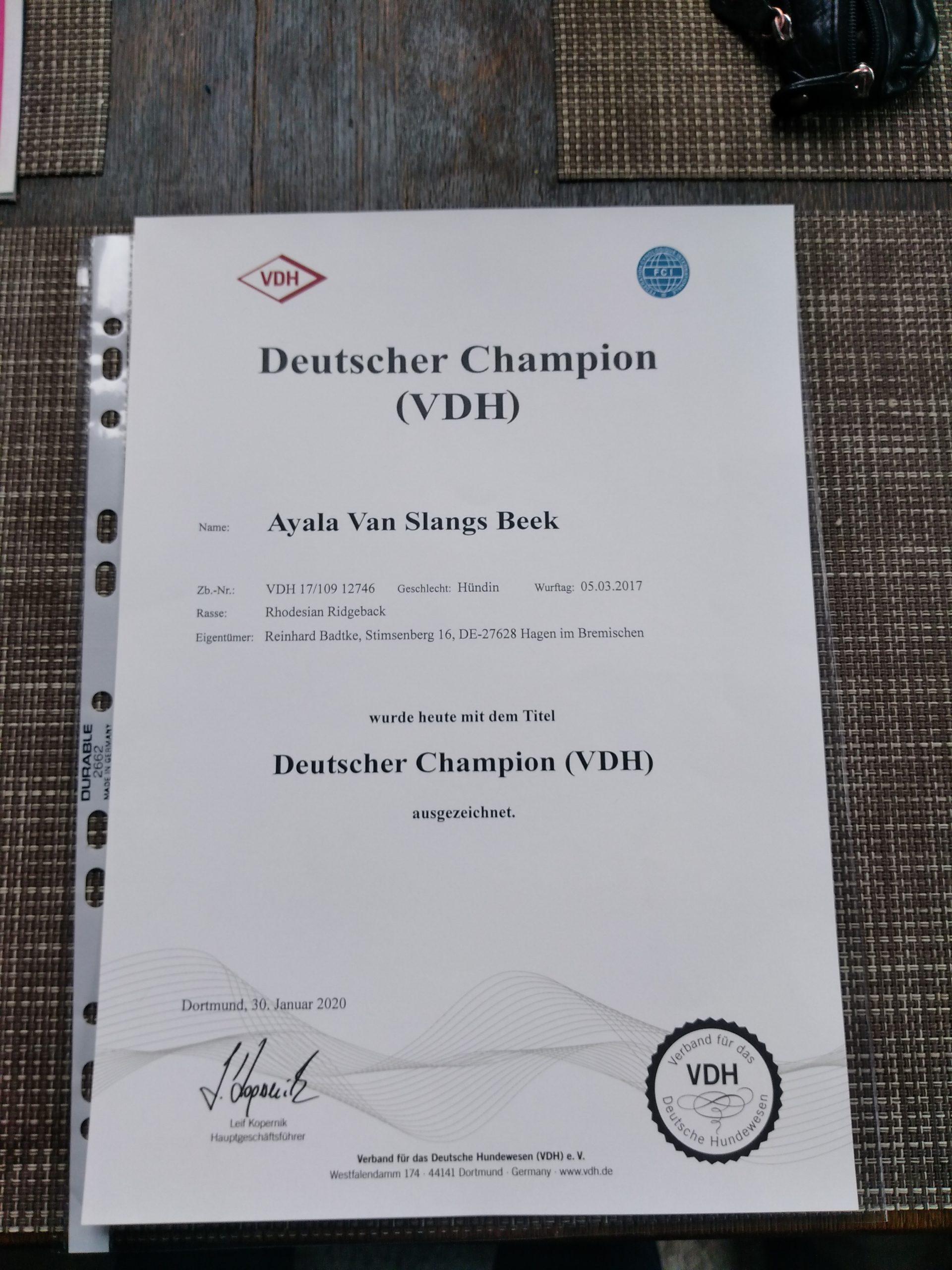 Ayala Urkunde Deutscher Champion VDH